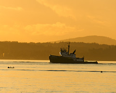 M/V Hunter D Tugboat (metadata man) Tags: sunset sun silhouette yellow washington south tugboat pugetsound crowley alkipoint mvhunterd