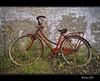 Abandoned (sirVictor59) Tags: sardegna italy nikon italia bicicletta d300 sirvictor59 mygearandme ringexcellence dblringexcellence flickrstruereflection1 flickrstruereflection2