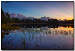 Cloud Bank (Fraggle Red) Tags: sky lake reflection clouds sunrise dawn nationalpark florida evergladesnationalpark campground canonef1740mmf4lusm pinetrees hdr enp 3exp longpinekey miamidadeco dphdr