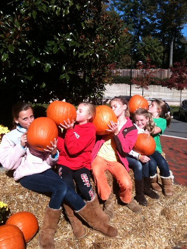 kissing pumpkins at Chevy Chase Center