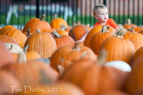 2011-10-19 - Pumpkin Patch-370