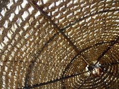 the beach umbrella (dmixo6) Tags: holiday spain playa andalucia dugg dmixo6