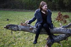 (amandaarns) Tags: autumn trees tree fall leaves ma outdoors sheep massachusetts pasture mass easton