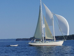 Port Townsend Wooden Boat Festival (boatbliS.S.) Tags: from port boat wooden view you photos or everyone townsend festivalx porttownsendwoodenboatfestival yachtxwoodenxwoodxsailboatxsailxpugetxsteelexsoundxsailingxplaceboxminuetxcutterxboatx