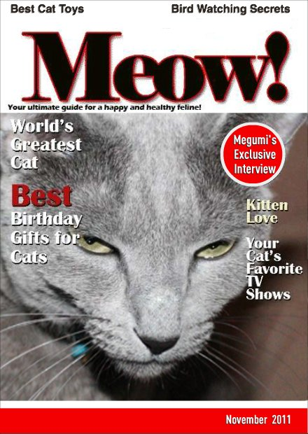 "Megumi's Exclusive Interview in ""Meow!"""