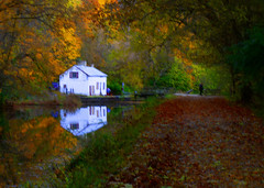 Autumn's Dream... (louieliuva) Tags: