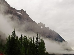 IMG_1537 (Lord Walt) Tags: park morning travel trees sky white mist snow canada mountains green ice nature rock fog clouds forest canon nationalpark scenery view country peaceful powershot alberta daytime geology tranquil jaspernationalpark canadianrockies hwy93 theicefieldsparkway waltphotos lordwalt sx30is