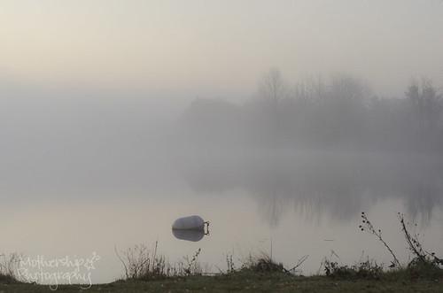 319:365 Foggy morning at the Long Island Lock