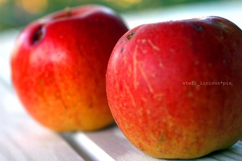 05_äpfel