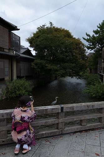 京都をめぐる冒険 祇園1