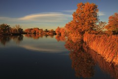 Lake Mary [Explore] (mclcbooks) Tags: lake fall leaves reflections landscape colorado lakescape rockymountainarsenal