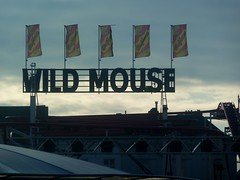 Wild Mouse (screenpunk) Tags: wild mouse belgium flag flags gent vlag vlaggen