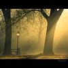 lights embrace / ölelő fények (heizer.ildi) Tags: bravo hungary természet fa táj fény köd tájkép ősz idream árnyék naturepoetry specialpicture canonsx10