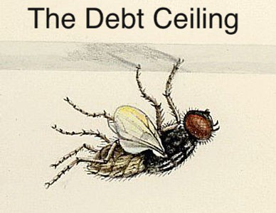 THE DEBT CEILING by Colonel Flick