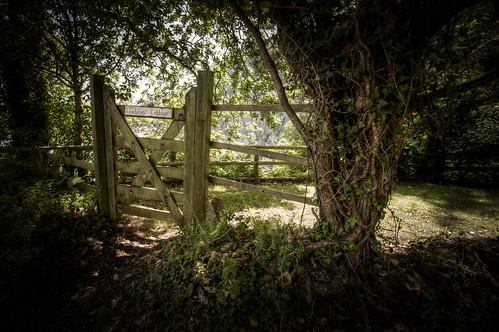 487/1000 - Gate to Woody Bay Cottage by Mark Carline