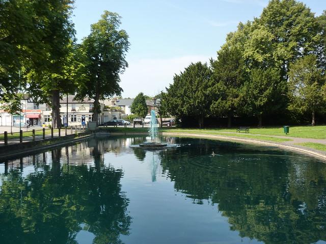 Elms Pond