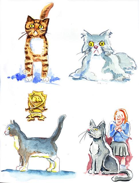 cats-7#48