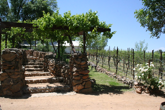 Page Springs Cellars & Vineyard, Cornville, Arizona