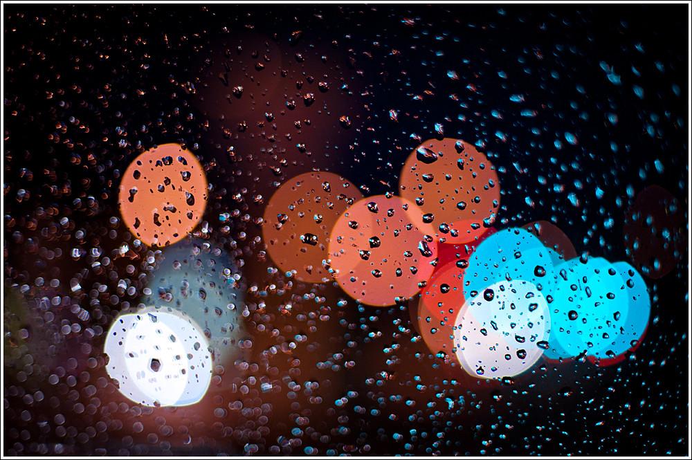 277 of 365 - Rain.