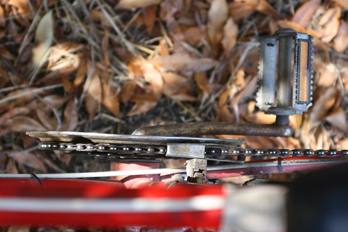 autumn bike rides.