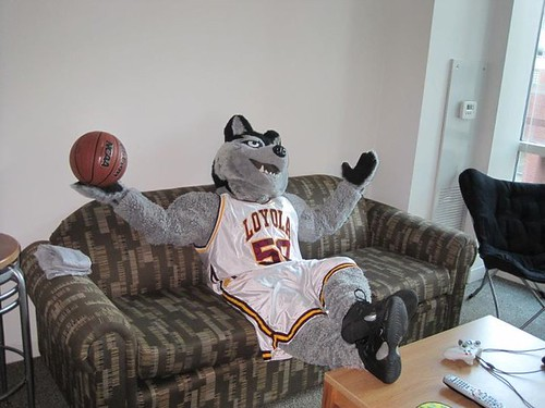 LU Wolf relaxes before the Madness begins!