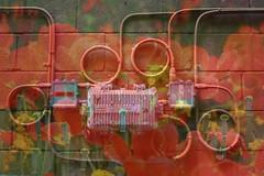 Graffiti (Billy McHugh) Tags: flowers electric brooklyn digital canon photography graffiti paint soho cement electrical cinderblock doublenegative williammchugh