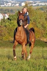 DSC_9703 (Dorothee Rie) Tags: autumn girls horses brown fall girl field sunshine evening herbst feld blond blonde sonne pferde pferd mdchen fuchs brauner abendlicht stute