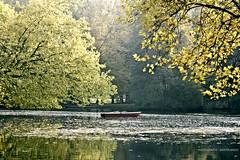 Berlin (GZZT) Tags: berlin boot see laub natur mb tiergarten anker guessedberlin gwbthmlamp ruderkahn gzzt martinbriese