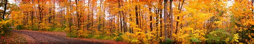 Fall panorama by Fotochoice Photography