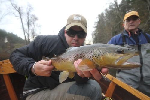 Late-Season Vermont Brown