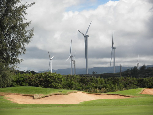 Turtle Bay Colf Course 281