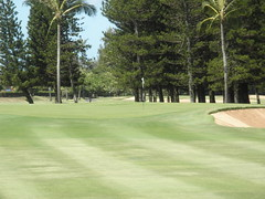 Turtle Bay Colf Course 167