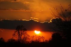 Sunset (LaLa83) Tags: autumn sunset ohio orange cloud sun tree silhouette evening october dusk sony alpha a230 2011 fairfieldcounty stoutsville