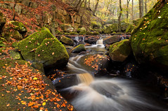 Autumn in Padley Gorge (Paul Newcombe) Tags: longexposure autumn england orange motion color colour green english fall water leaves river landscape photography countryside movement october derbyshire wideangle british brook peaks tamron autumnal 1024 grindleford padleygorge peakdisctrict leadin