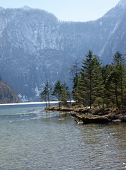 DSC07396 (***Images***) Tags: mountain lake alps tree landscape bayern alpen knigssee greatphotographers natureplus concordians absolutelystunningscapes 100commentgroup oltusfotos mygearandme