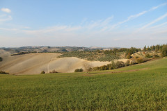 Val d'Asso (Paolo Romagnoli) Tags: italy nature field rural landscape countryside natural outdoor country hill farming natura campagna tuscany land environment siena agriculture toscana valdorcia agricultural collina ambiente agricultura orcia naturale agreste agricolo