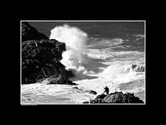 13. Rock Fishermen #2 (InPort05) Tags: ocean white seascape black landscape fishing rocks waves fishermen cove australia backwash portmacquarie waterscape angling tackingpoint rockfishermen dennisgayaustraliaportmacquarieseascapewaterscapecoastapartmentproject