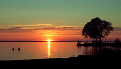 Lake Pleshcheyevo, Russia (Ferry Vermeer) Tags: travel sunset sun lake water silhouette swimming russia silhouettes russie rusland rusia ロシア pereslavl pereslavlzalessky russland travelphotography россия rosja ryssland 俄罗斯 俄羅斯 rússia pereyaslavl rusya rusko rusija रूस 俄国 רוסיה pereyaslavlzalessky روسيا centralrussia 俄國 русия yaroslavskayaoblast русија росія ρωσία yaroslavloblast lakepleshcheyevo яросла́вскаяо́бласть плеще́евоо́зеро ferryvermeer пересла́вльзале́сский центра́льныйфедера́льныйо́круг tsentralnyfederalnyokrug