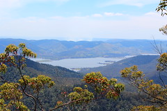 View down to the Somerset Dam from the Western Escarpment of d'Aguilar National Park (tanetahi) Tags: panorama forest somerset reservoir queensland somersetdam sclerophyll daguilarnationalpark westernescarpment