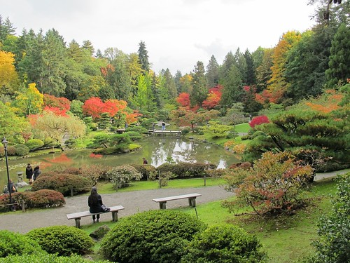 japanese garden at the arboretum