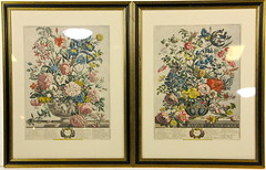 193. Pair of Botanical Prints