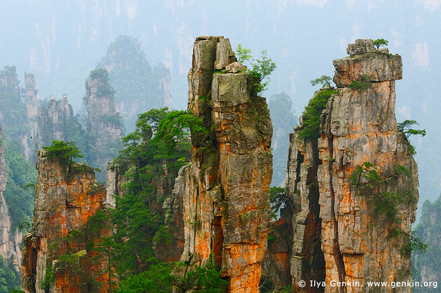 Stone Pillars in Zhangjiajie, Tianzi Mountain Nature Reserve, Zhangjiajie National Park, Hunan, China