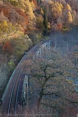 Railway over the viaduct at Pass of Killiecrankie (tomgardner) Tags: uk greatbritain autumn fall scotland countryside europe european unitedkingdom perthshire scottish rail railway viaduct british perthandkinross killiekrankie
