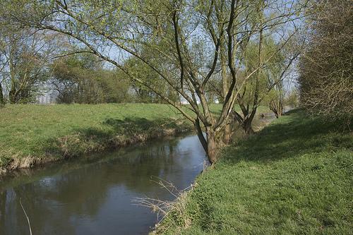 圖二:尼塔河經過生態復育後的現貌。攝影:Christopher Neugebauer;本圖適用CC-BY授權