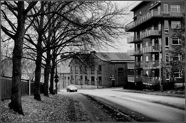 Herrhagen i svartvitt