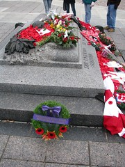 Remembrance Day 2011 - The Tomb of the Unknown (dwight_ew) Tags: canada aircraft ottawa remembranceday remembrance veterans militaryhistory elginstreet 2011 canadianwarmemorial confederationboulevard