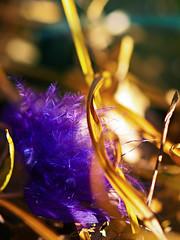 Tuft (jaxxon) Tags: macro grass lens prime nikon dof purple bokeh feathers feather puff depthoffield micro pouffe fixed 28 365 mm tufts nikkor delicate upclose hmm pouf f28 tuft vr afs nestled 105mm 105mmf28 2011 d90 driedgrass nikor project365 f28g gvr jaxxon multifarious 105mmf28gvrmicro ayearinpictures macromondays macromonday nikkor105mmf28gvrmicro 314365 nikon105mmf28gvrmicro jacksoncarson