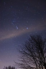 The Night Sky - Nov 23 (szuberi) Tags: night orion constellation quotcanon skyquot 5dquot szuberi f14quot quot50mm quotontario