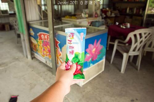 20110620白河蓮花季-5662