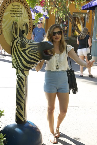 me and zebra